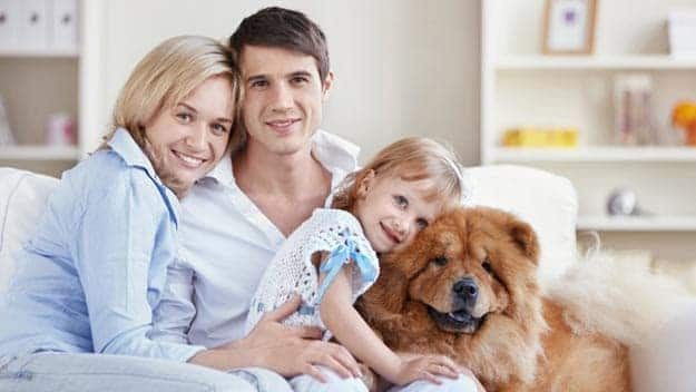 Wills & Trusts dog-young-family Direct Wills Holme Chapel
